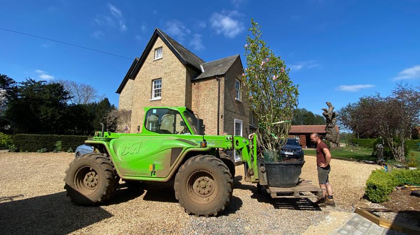 Private Garden tree planting